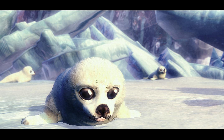 A cute seal